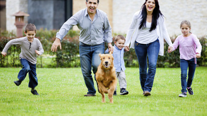 Your Pets Are Family- Keep Them Protected this Summer