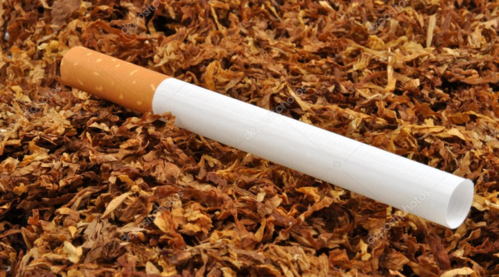 Whats inside a cigarette and which one should we have