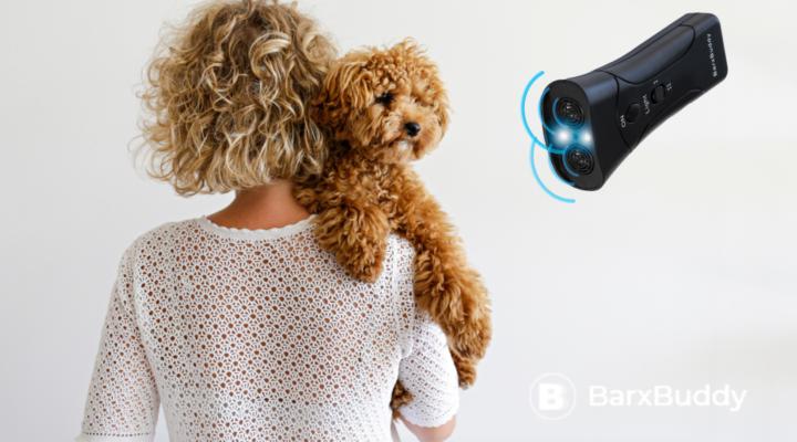 Real Review: Why I Love My BarxBuddy Ultrasonic Dog Training Device